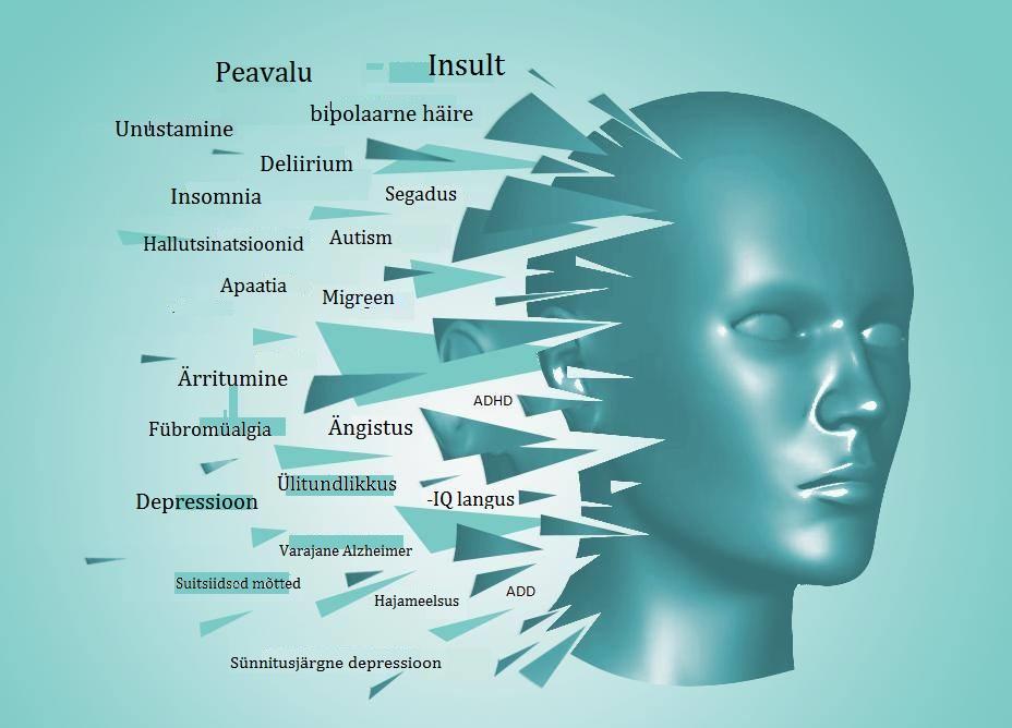 Magneesiumipuudus Meie vaimule