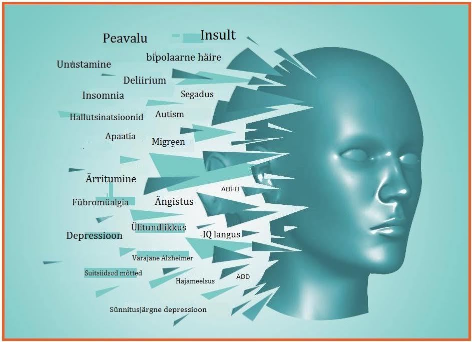 21 terapeutilist väärtust www.magneesium.ee